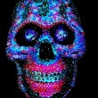 Extra Large Skull covered in more than 3,000 sequins - $100