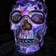 Lavender Skull - Front View - $75