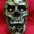 Reptile Skull Front View - $75