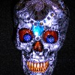 Silver/Black/Blue Skull - Front View $75