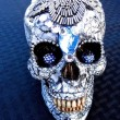 Silver Skull - Front View